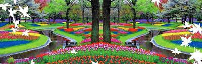 Amsterdam Flower Show