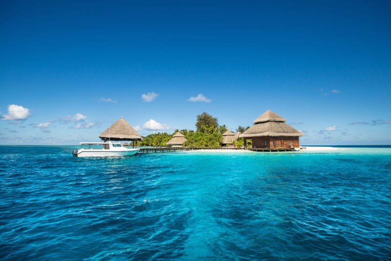 Maldives Honeymoon