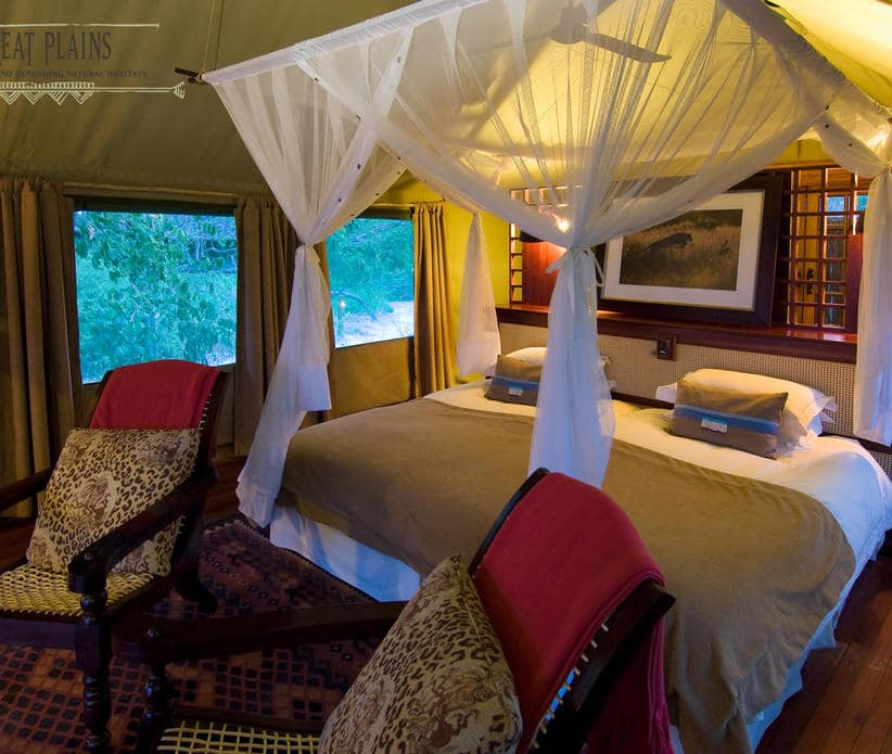 Botswana and South African Honeymoon